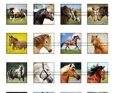 Horses - 1,5'' squares, graphics for scrapbooking, stickers, Digital Printable  Images File 8,5x11, BUY 2 GET 1 FREE