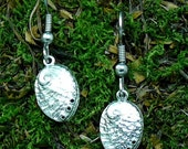 Abalone Shell Earrings Sterling Silver