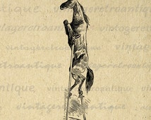 Horse on Stilts Digital Image Download Illustrated Graphic Printable Antique Clip Art for Transfers Printing etc HQ 300dpi No.3357