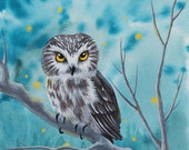 Firefly Eyes-Northern Saw-whet Owl