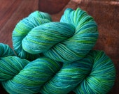 Fields Ertel colorway on Assateague yarn base  - Luxury MCN Hand Dyed Fingering Weight Yarn