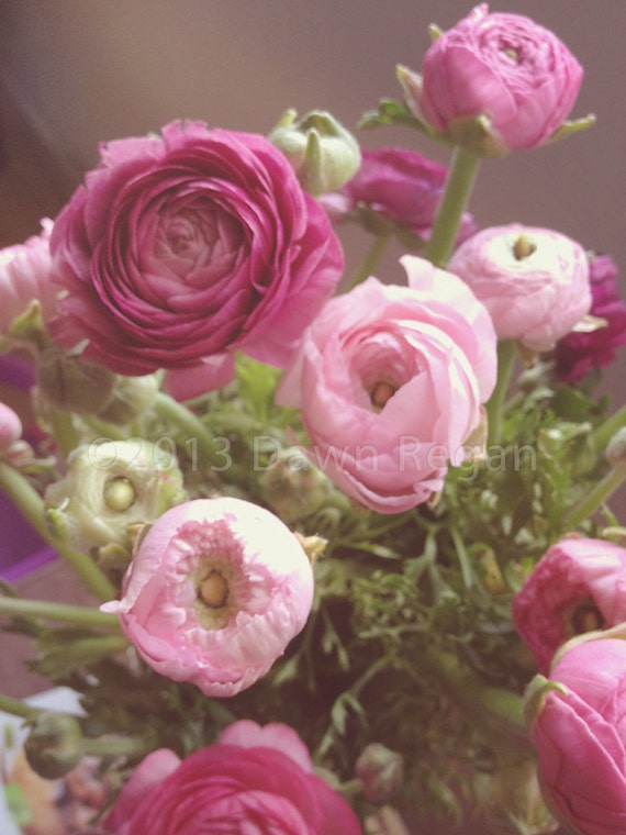Pink and purple ranunculus bouquet fine art by ladybythebay