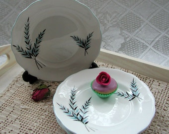 Vintage Royal Standard tea plates in bone china with a lovely blue fern pattern 1950's
