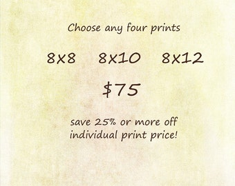 Discount Set - Choose any FOUR Prints - 8x8, 8x10, 8x12 - Save at least 25%