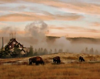 Old Faithful Inn Yellowstone National Park Wyoming bison sunrise landscape fine art 10x20