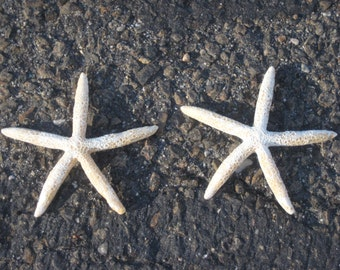 100 WHITE FINGER STARFISH Faux Star Fish Sea Star Resin Beach Coastal Wedding Decor Fake For Place Cards InvitationsCenterpieces and More