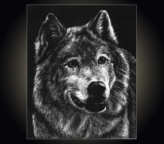 wolf pen single personals Favorite this post feb 28 arbors at wolf pen creek - available 4/2/18-7/29/18 ($480 incl util) favorite this post feb 9 single bedroom for sublet.