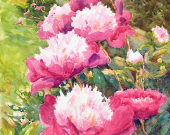Pink Peonies Canvas Print emerald green, garden of flowers, floral pastel