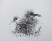 Young Birds on Nest (Print) - LevendGlas