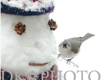 Snowman & Bird, Fine Art Photograph