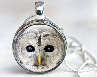 Owl Picture Jewelry - Glass Owl Jewelry - Owl Picture Necklace