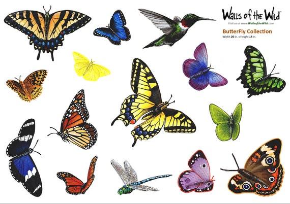 Butterfly  Assortment  Wall Decals