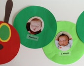 The Very Hungry Caterpillar -  1st Birthday Month-by-Month Photo Banner Decoration