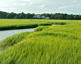 "8x10 Matte Finish Grassland and Canal ""Charleston"" Series Photo, ""Paradise"""
