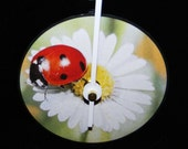 LADYBUG On A Daisy Vinyl Record LP Wall Clock
