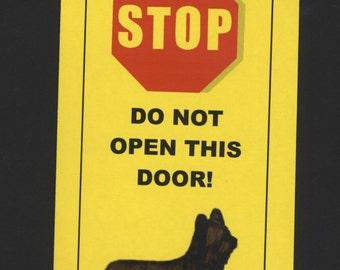 Dangerous Skye Terrier Inside - Has Killed Squeaky Toy