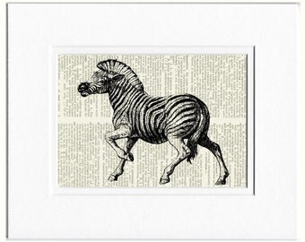 zebra II dictionary page print