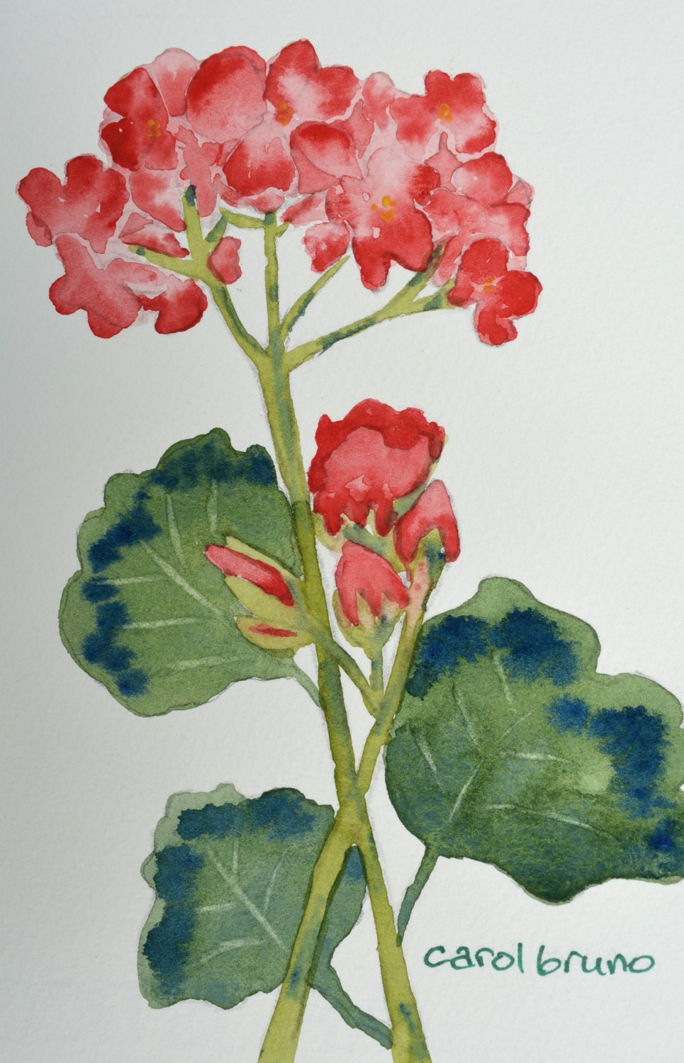 Easy watercolor paintings flowers for Easy watercolor for beginners