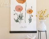 Poppy Study Vol.1 - large wall hanging, wood trim and printed on textured cotton canvas. Vintage Science Posters