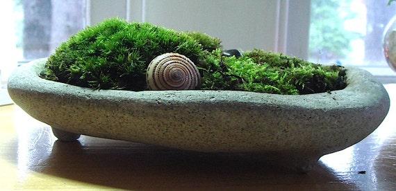 Zen Concrete Handmade Mini Moss Bowl Planter Home Decor