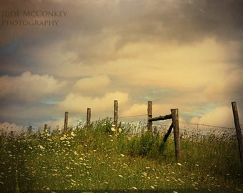 field landscape photography nature summer fine art photography home decor office decor