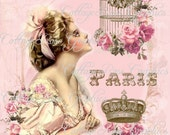 Large digital download Paris Dreams French pink roses single image BUY 3 get one FREE
