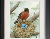 Bird Tree with Robin - archival watercolor print by Tracy Lizotte