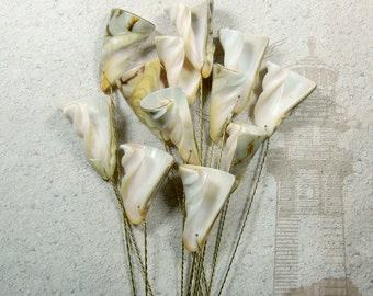 12  Seashell Stems - Colorful Sealilies - Seashells for Wedding Bouquets Bridal Bouquets