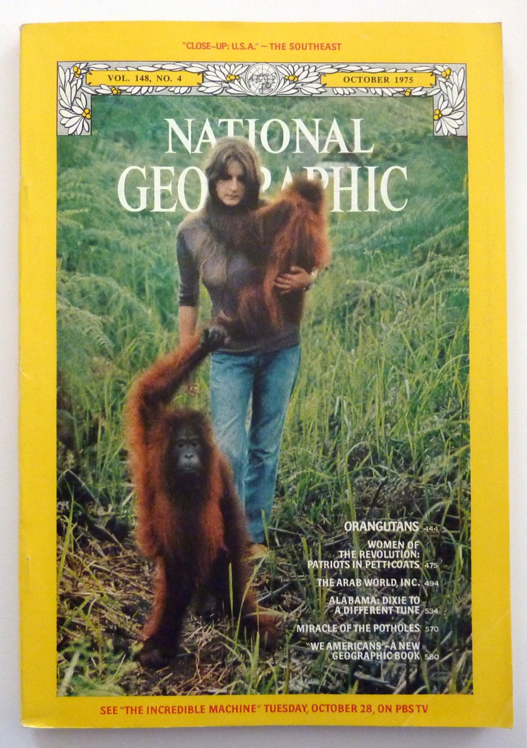 National Geographic Christmas Cards