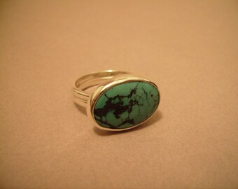 Turquoise Ring with Double Band