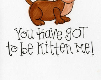 You Have got to be Kitten Me -- A7 FREE SHIPPING