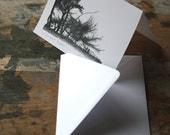 Notecard - Windswept Trees