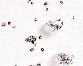 Lovely Pocket Sequins - Silver