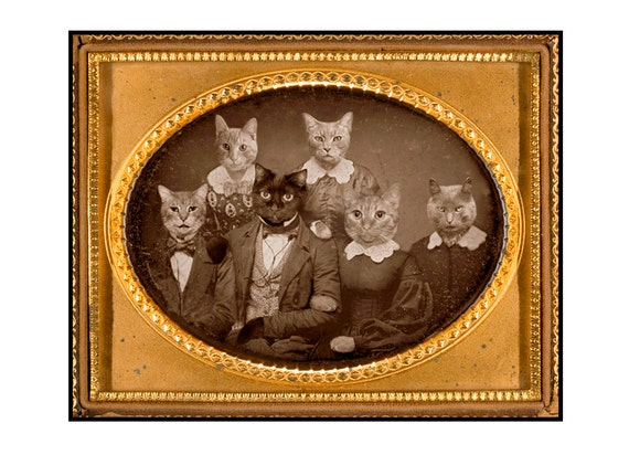 Cats, vintage photograph, mixed media collage, paper collage, Funny, Silly, Altered Art, Sepia, Brown, Gold, 4 Greeting Cards, Blank Inside