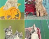 Lot of 4 Kitsch Vintage 1960's Cat Postcards - Vintage Cat Ephemera Vintage Kitsch Cat Kitties Kittens Photos Scrapbooking