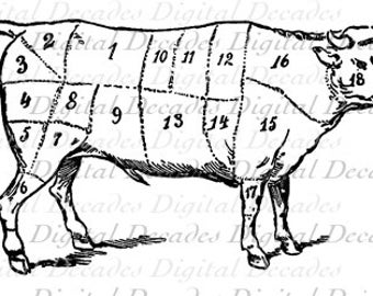 Post printable Beef Butcher Chart 305092 together with Pig Diagram additionally 7C 7C  educatall   7Cimages 7CIMG 312 besides Beef Cow Parts Diagram in addition Laser Cut Decor Templates Ideas. on beef cuts diagram printable