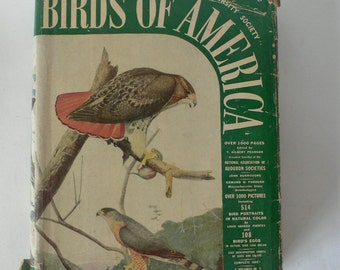 vintage book, Birds of America, 1936, from Diz Has Neat Stuff