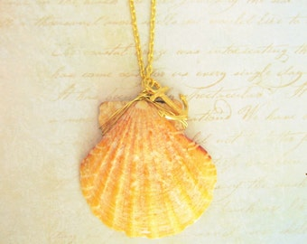 Seashell Necklace, Shell Necklace, Shell Jewelry,Seashell Jewelry,Mermaid Necklace,Real Shell Necklace,Sunrise Shell Necklace,Beach Necklace