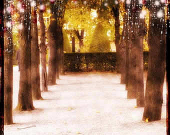 Tree Lights photography, Starry Lights Art, Forest Trees, Pink, Whimsical Forest, Large Wall Art