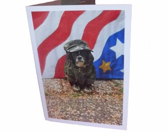 Independence Day Card, Shih Tzu Patriotic Card, Military Humor Greeting Card