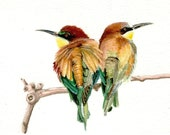 ATC, Bee Eaters, 2.5x3.5 PRINT from original watercolor painting, birds, art & collectibles ACEO earthspalette