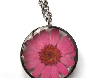 Pink Daisy Resin Pendant Necklace - Real daisy encased in resin with open back copper bezel, Pressed Flower Jewelry