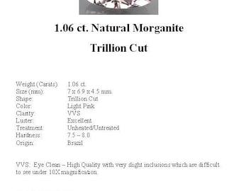 MORGANITE - Striking Light Pink 1.06 Carat Natural  Morganite GemStone in a Stunning Trillion Cut...