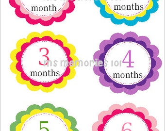 Sale~ Flower Monthly Infant Stickers