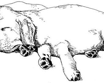 Labrador Puppies Illustration Black and White Print