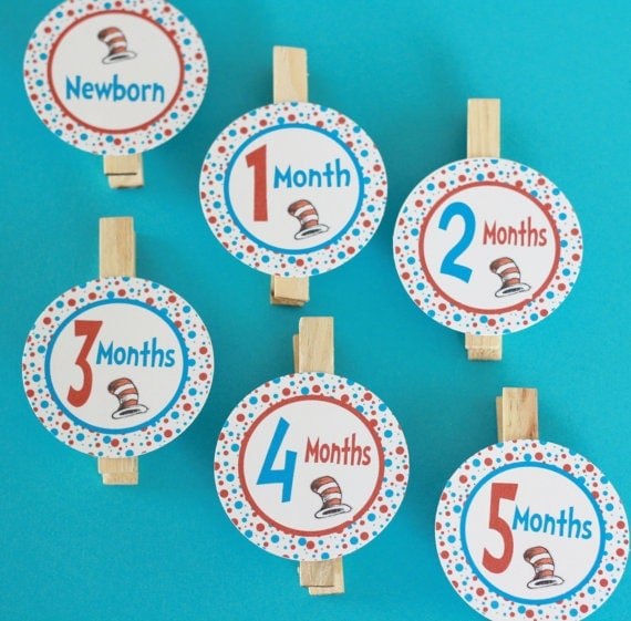 Cat Birthday Banner: 1st Year Photo Clips Birthday Party Dr. Seuss Cat In Hat