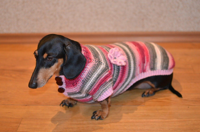 Фото одежды для таксы вязание