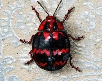 "Fine Art Print - ""Blushing Beetle"