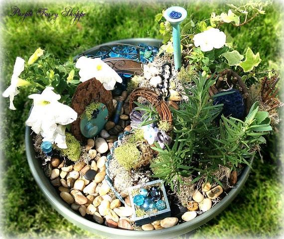 Items similar to Sparkle Fairy Garden Kit, Fairy Garden ...