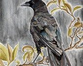 Crow. Raven. Bird perched on tree branch. Animal painting. Illustration.